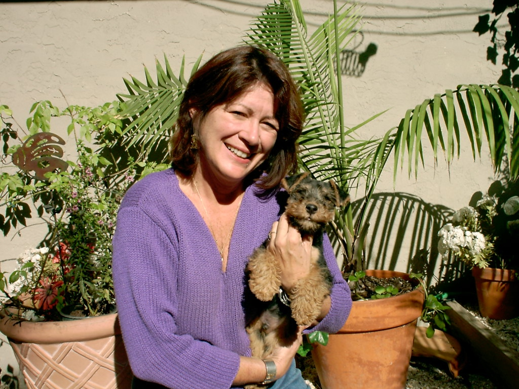 Welsh Terrier Rescue Florida Caryn Stevens was raised in